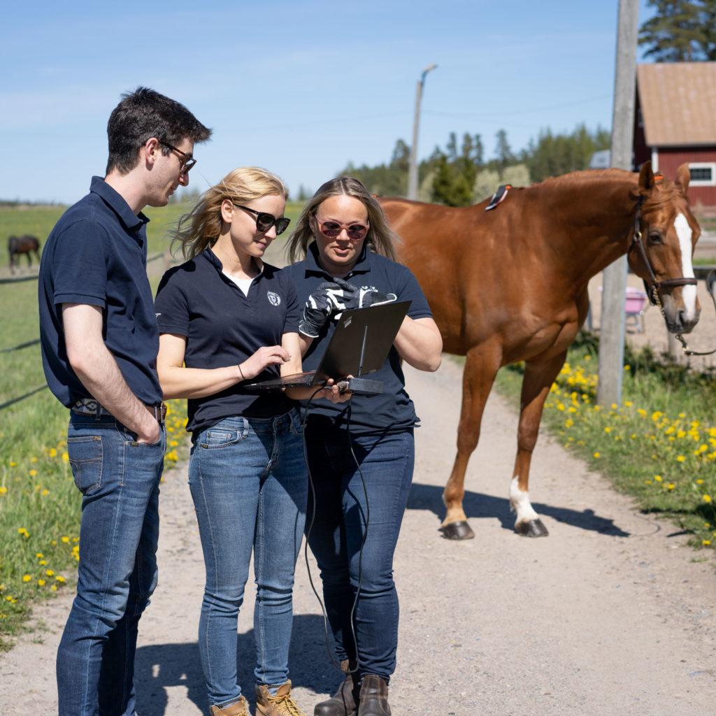 WHG Equine Sport Performance, equinevet.fi