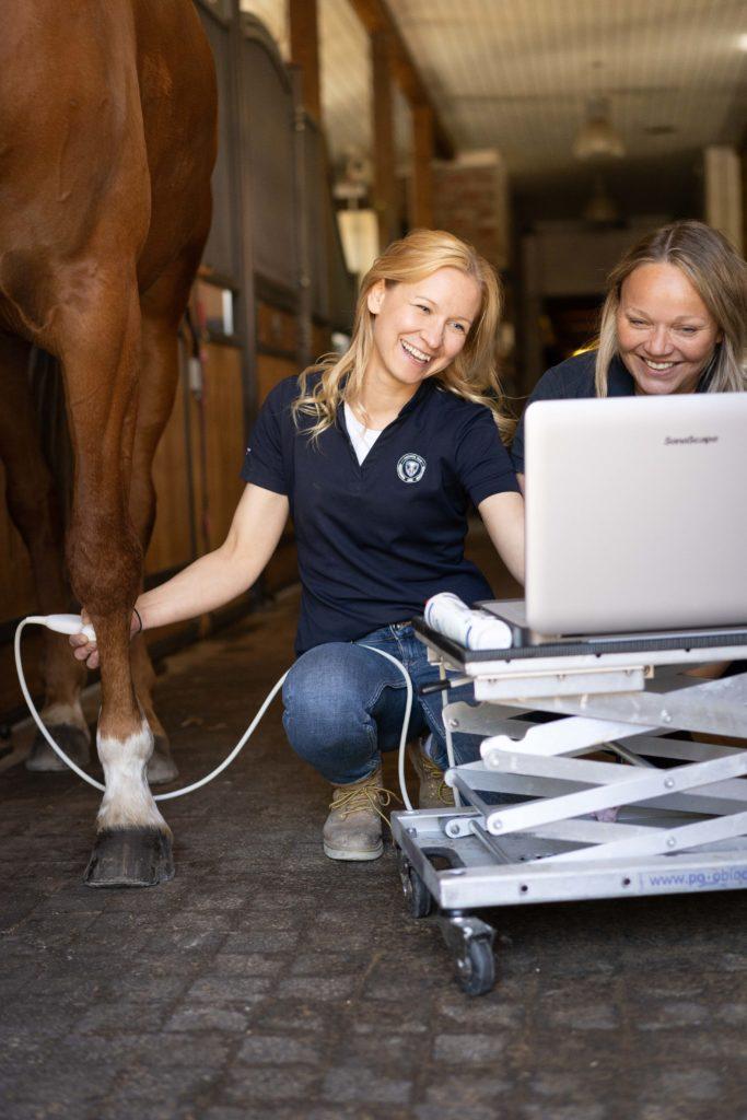 Hevoseläinlääkäri WHG Equine Sport Performance, equinevet.fi